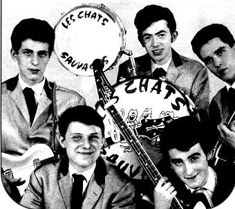 La belle histoire des Groupes de Rock français des années 60 - Hervé Mouvet,Jean Chalvidant